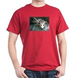 Three-Tailed Possum T-Shirt