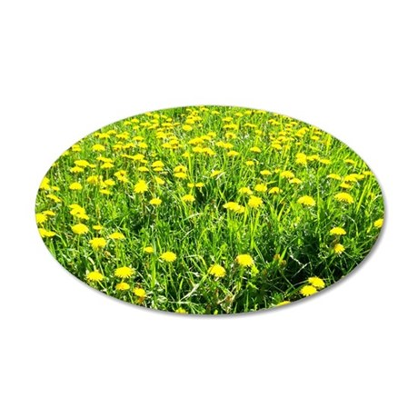 Field of Dandelion Blossoms 35x21 Oval Wall Decal