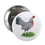 Blue Gold DW Hen Button