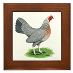 Blue Gold DW Hen Framed Tile