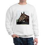 SEATTLE SLEW Sweatshirt