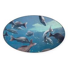 Aquarium inside Atlantis Resort, Na Decal