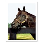 SEATTLE SLEW Posters