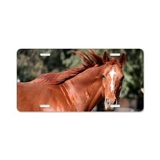 Red Horse Aluminum License Plate