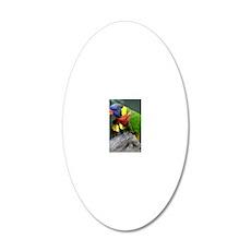 Blue Head Bird 20x12 Oval Wall Decal