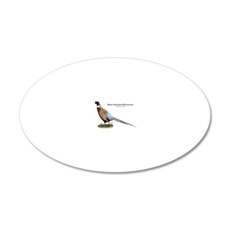 Ring-Necked Pheasant 20x12 Oval Wall Decal