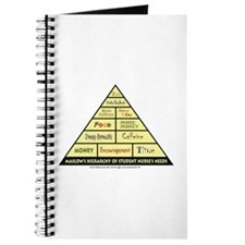 Maslow's Student Nurse Hierarchy Journal