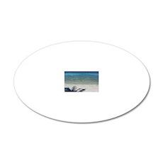 IMG_0284-adj 20x12 Oval Wall Decal