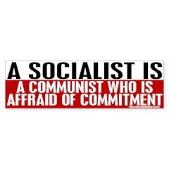 A Socialist Is... Bumper Sticker