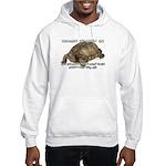 Valuable Pet Lesson #6 Hooded Sweatshirt