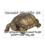 Valuable Pet Lesson #6 Postcards (Package of 8)