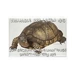 Valuable Pet Lesson #6 Rectangle Magnet (100 pack)