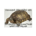 Valuable Pet Lesson #6 Rectangle Magnet (10 pack)