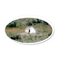 700yd4blk Oval Car Magnet