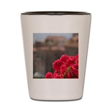 Italy, Cortona, Flower boxes Shot Glass