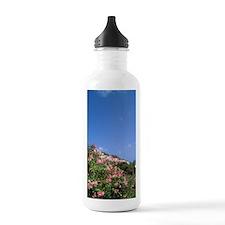 Green clocktower Le Vi Water Bottle