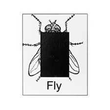 fly Picture Frame