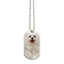 maltese ov key Dog Tags