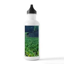 Tobacco farm. Water Bottle