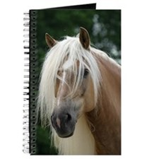 Haflinger Journal