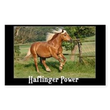 Haflinger Rectangle Decal