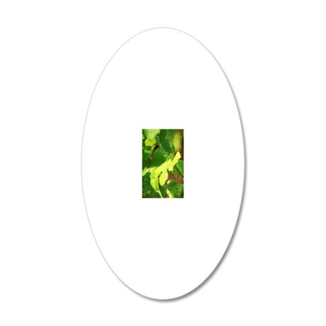 Young vines in a row closely 20x12 Oval Wall Decal