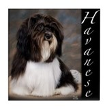 Havanese Tile Coaster