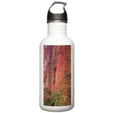 Autumn-colored Ivy dec Water Bottle