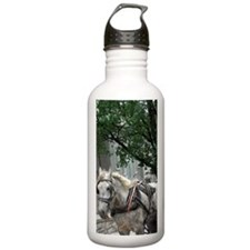 Traditional horse carr Water Bottle