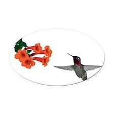 hummingbird2 Oval Car Magnet