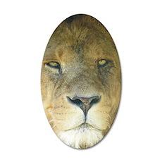 Lion ipad 20x12 Oval Wall Decal