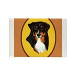 Australian Shepherd design Rectangle Magnet (10 pa