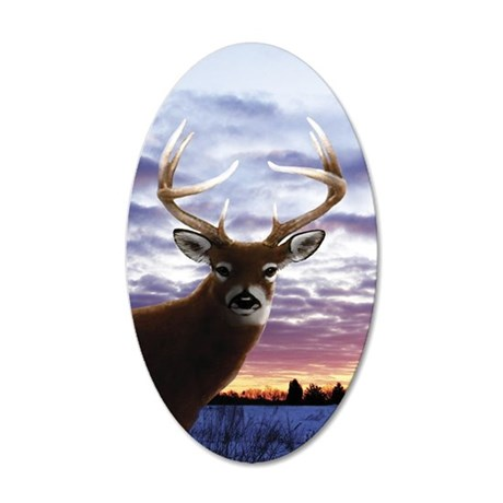 iTouch4_Generic 35x21 Oval Wall Decal