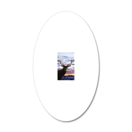 iTouch4_Generic 20x12 Oval Wall Decal