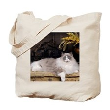 H Sammy fireplace Tote Bag