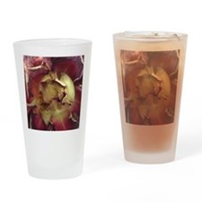 Dried Rose Drinking Glass