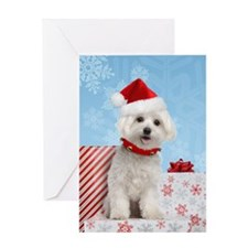 Maltese Christmas Card Greeting Card