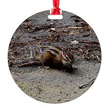 DSC_0115 Ornament