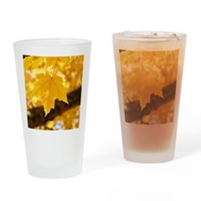 Autumn Leaves 53 Yellow Golden Glow Drinking Glass