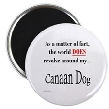 Canaan Dog World Magnet