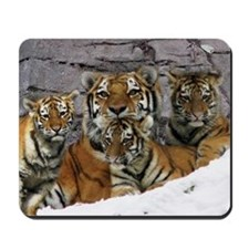 toma and cubs Mousepad