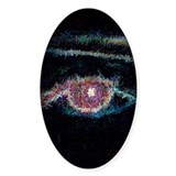 Portrait of an Eye Oval Decal