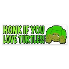 Honk If You Love Turtles!
