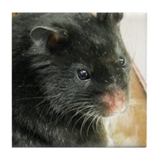 Black Hamster Tile Coaster