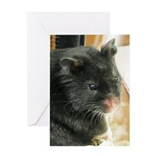 Black Hamster Greeting Card