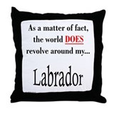 Lab World Throw Pillow