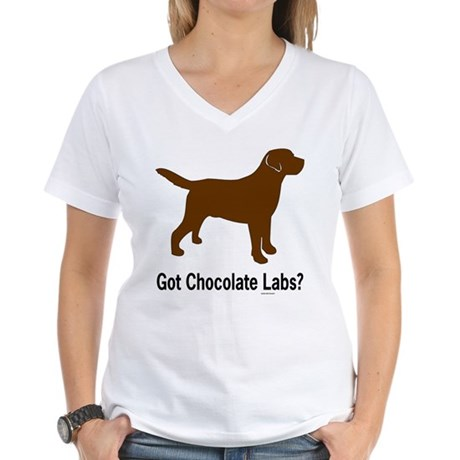 Got Chocolate Labs II Women's V-Neck T-Shirt