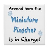 Min Pin Charge Tile Coaster
