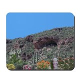 Cliff dwelling with Cactus in Bloom Mousepad