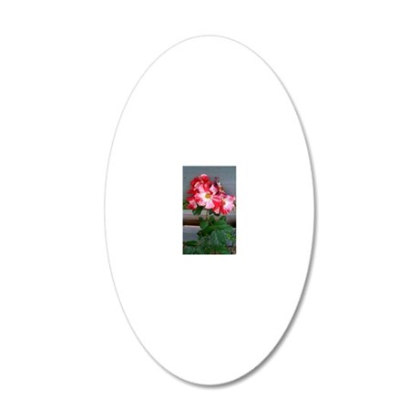 Fourth of July climbing rose 20x12 Oval Wall Decal